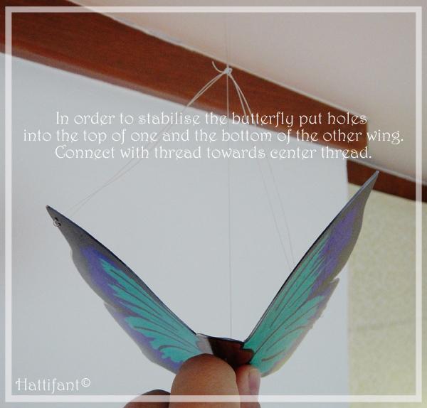 11_stabilysingButterfly