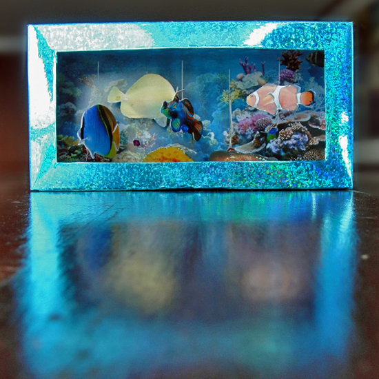 Re-Cycle Project: Tissue Box Aquarium