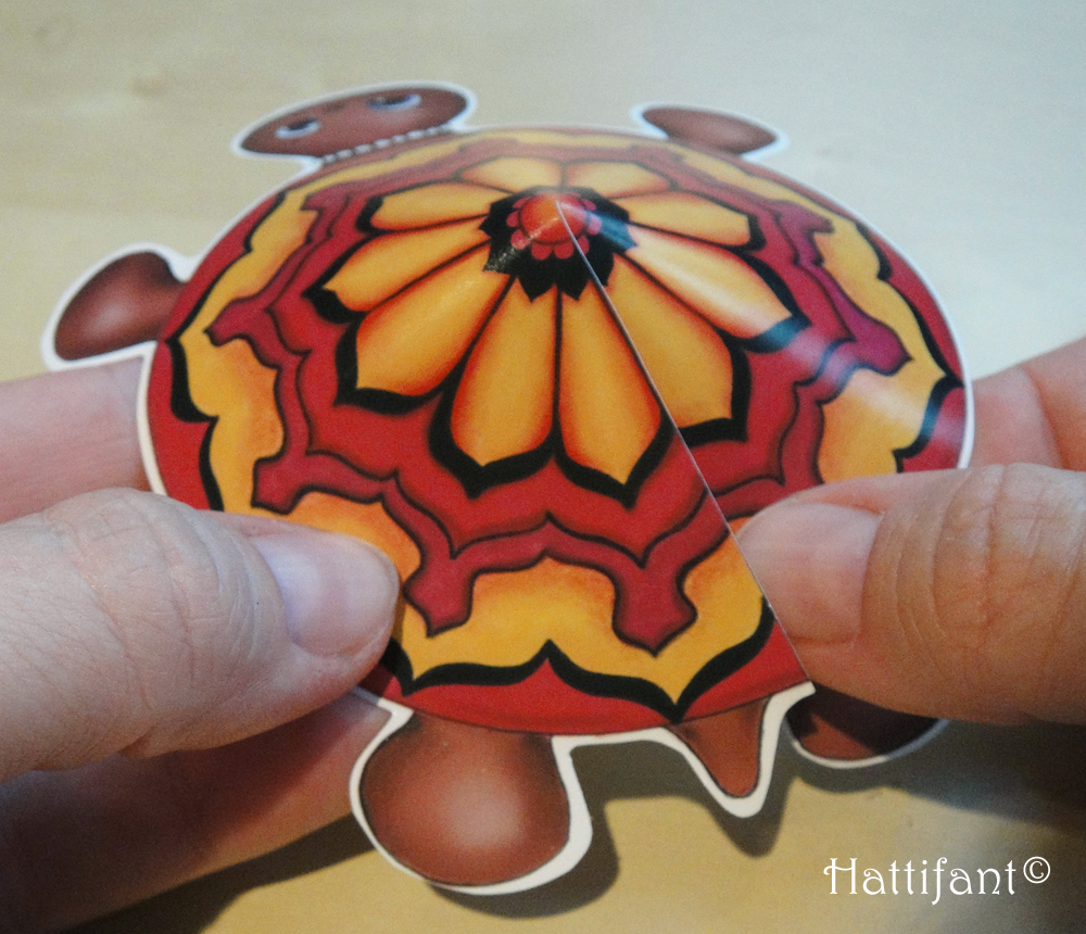 How to tape the turtle