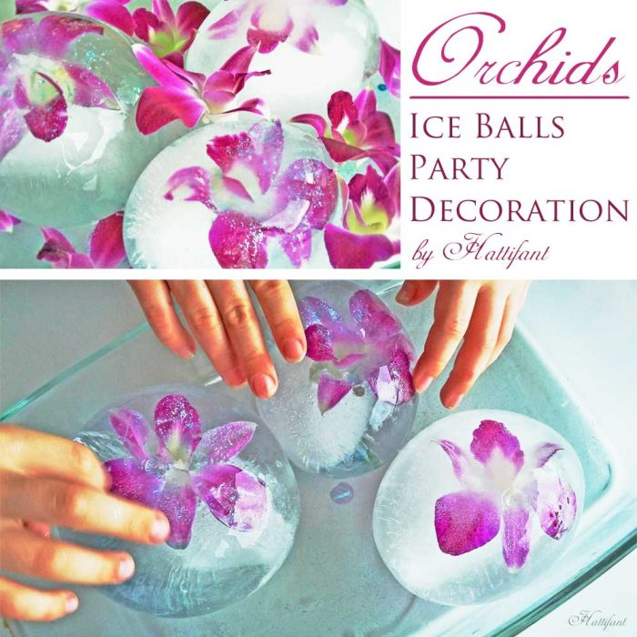 Hattifant Frozen Orchid Ice Ball Party Play and Decoration