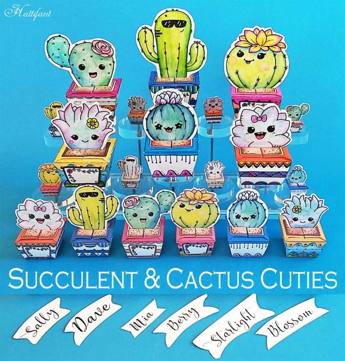 Hattifant's Succulent and Cactus Papercraft Bundle to color and DIY and use as favor box send message and collect