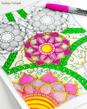 Adult Coloring Book Treasruy Andreja Vu?ajnk Artist