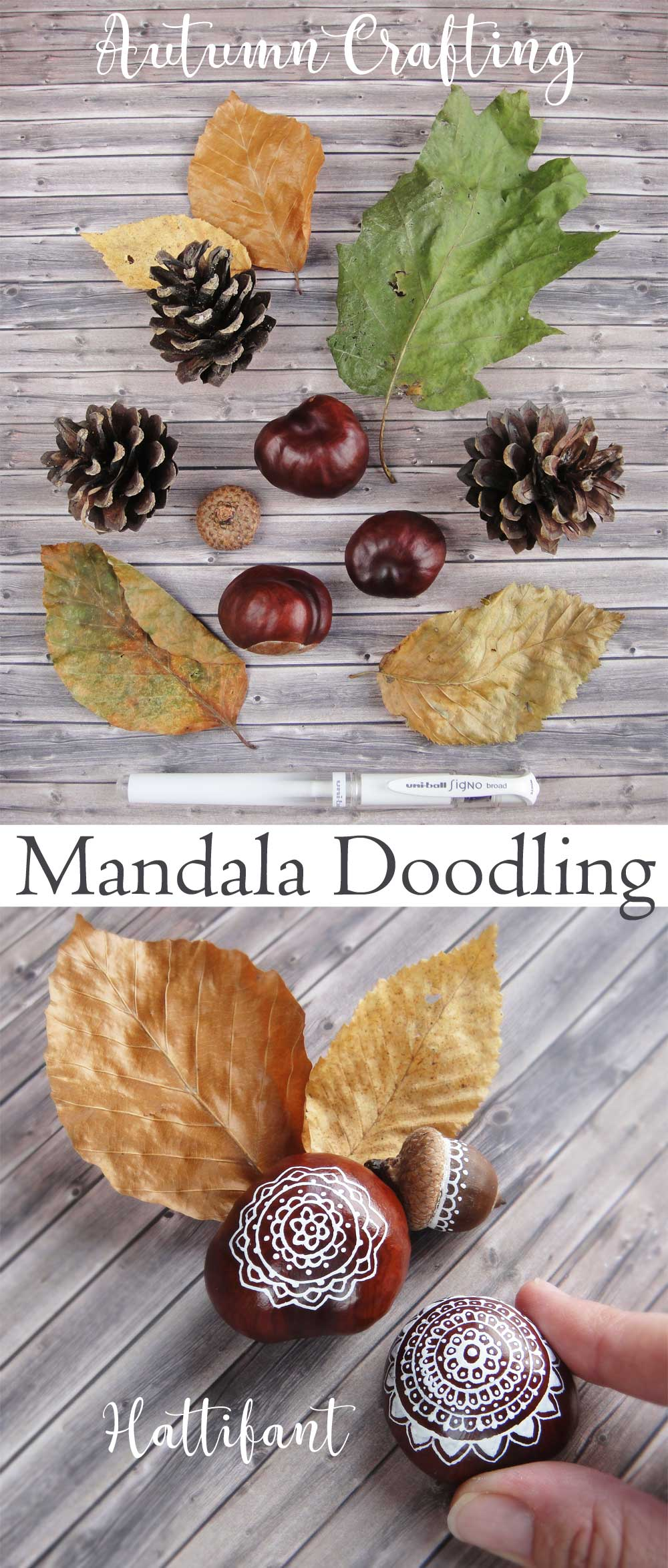 Hattifant's Autumn Crafts Mandala Chestnuts Doodling with Printable