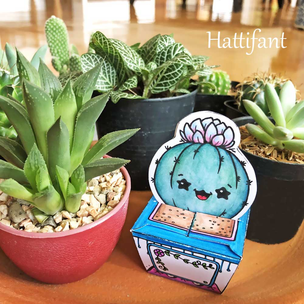 Hattifant's Paper Craft Succulents Cactus Cuties little gift boxes to color, craft and gift Sample